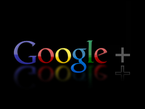 Google+ for Performance Window Tint and Clear Bras